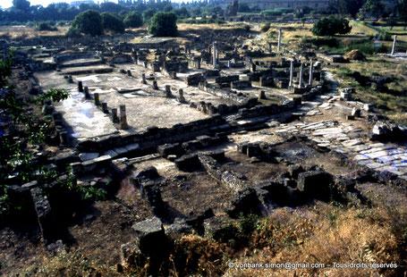 Annaba (Hippo Regius) : Basilique de la Paix (ou basilique Majeure)
