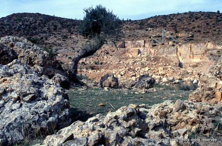Chemtou (Simitthu) : Carrières de marbre aux environs du site