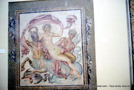Timgad (Thamugadi) : Mosaïque - Triomphe de Vénus (Musée) (Algérie)