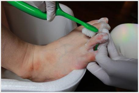 足爪専用のブラシで足趾間をしっかり洗います。