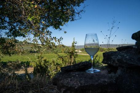 Bild: Vignobles Chasson-Château Blanc, Rossillon