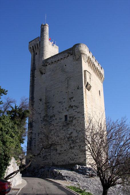 Bild: Tour de Philippe le Bel in Villeneuve les Avignon