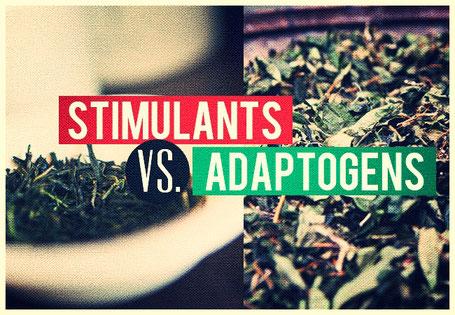 Stimulanz - Zimmerli Adaptogene