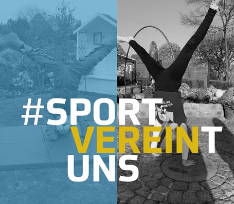 #sportvereintuns, sportvereintuns, Gerätturnen, Gifhorn, Braunschweig, Wolfsburg, Leistungsturnen, Kinderturnen, Rad, Bewegung