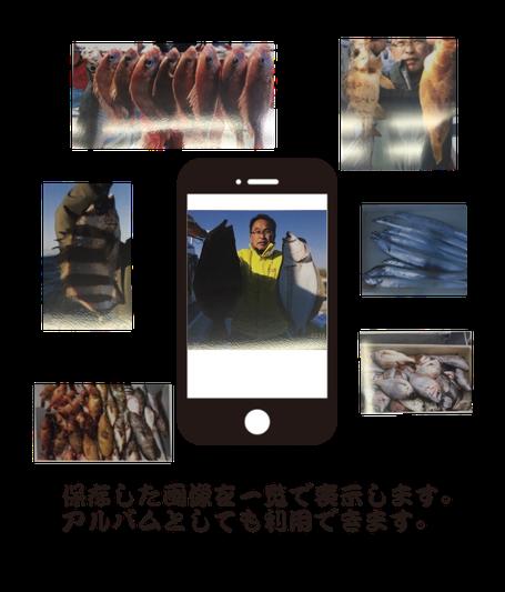 スマートフォンアプリ,釣果記録,釣果,釣り,魚,魚記録,釣り手帳,画像3