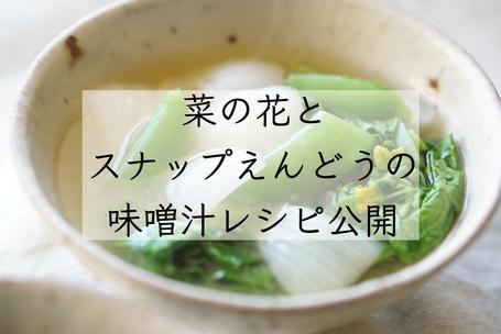 味噌汁 味噌汁レシピ 味噌汁料理研究家 家庭料理 料理教室