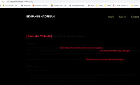 """Screenshot: Nach Klicken auf """"Diese Webseite verwendet Cookies, um Ihnen ein optimales Online-Erlebnis bieten zu können. Durch die Nutzung dieser Webseite erklären Sie sich mit der Verwendung von Cookies einverstanden. Mehr Infos"""" auf Hadrigans Home-Seite"""