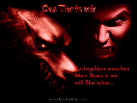 Rachegelüste. Das Tier in mir, der Wolf in mir will Blut sehen. Schwarze Magie und magische Rituale.