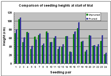 Fig.3 A wide range of starting heights in the twenty four pairs of matched seedlings