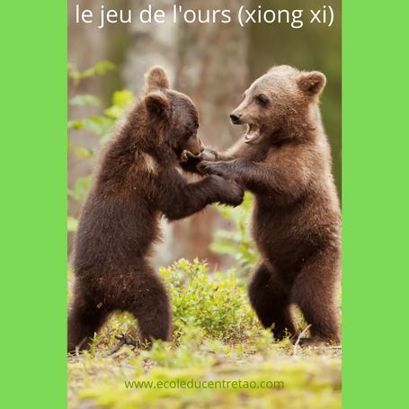 Qigong des cinq animaux: image de deux oursons jouant debout.