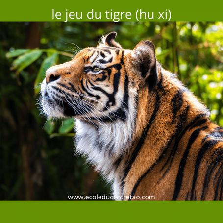 Qigong des cinq animaux: image du tigre dans la jungle.