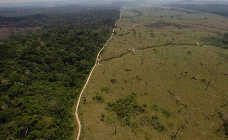 Deforestazione dell'Amazzonia