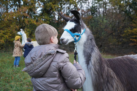 Kindergeburtstag mit Lamas, Kindergeburtstag, Kind mit Lama, Lamawanderung, LAMA MAMA, Sommerein, NÖ