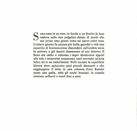 testo dell'autore