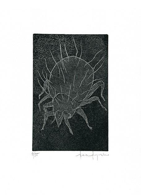 incisione originale all'acquaforte di Luciano Ragozzino numerata e firmata - lastra 158x100 mm