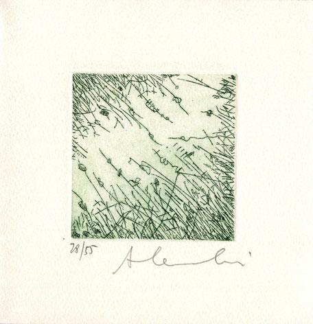 acquaforte originale dell'autore numerata e firmata - lastra 80x80 mm