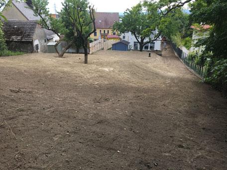 Geländegestaltung nachher