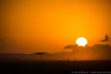 Fotograf Friedrichsdorf - Kenia