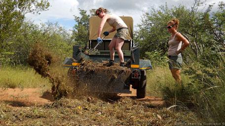 Samenwerking in het bos van Zuid-Afrika
