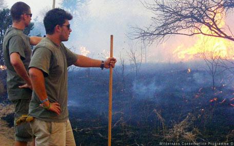 Gecontroleerde branden in Zuid-Afrika