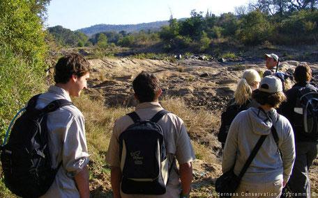 Wandeling door de wildernis in Zuid-Afrika