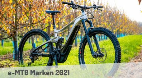 Informationen zu den besten e-Mountainbike Marken 2019.