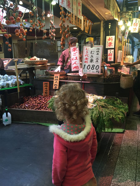 Family Friendly Walks in Kyoto, Japan - Nishiki Market