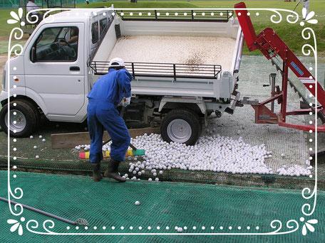 【楽輪】-スタッドレス8本八輪型 芝仕様 回収ボールをダンプ