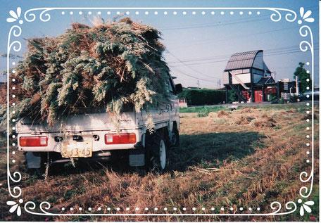 【楽輪】品番001 藁の搬出 この車は2WD