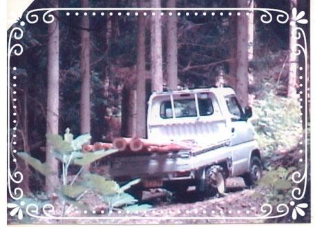 【楽輪】品番001番 間伐材を積んで斜度17度の林道走行