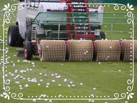 【楽輪】-スタッドレス8本八輪型 芝仕様 練習ボールを回収