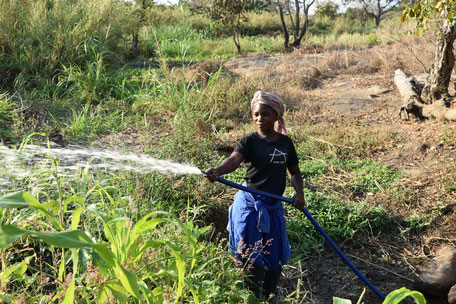 Projekt Mosambik 2019