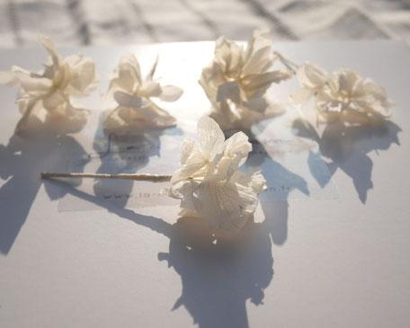 Pics de cheveux pour la mariée et les demoiselles d'honneur, en véritables fleurs d'hortensia stabilisées. Créations de La cinquième Saison, faites main, dans le sud de la France.