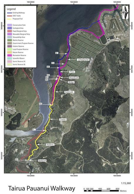 Pauanui Tairua Trail