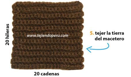 Cactus fantasía tejido a crochet (amigurumi)