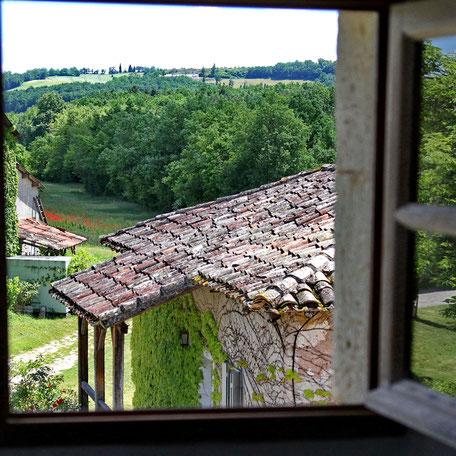 Chambres d'hôtes au château de Mayragues - Castelnau de Montmiral Tarn - Chambre Braucol - Vue sur le vignoble