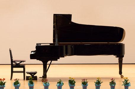 出張撮影(ピアノ発表会・イベント・集合写真)