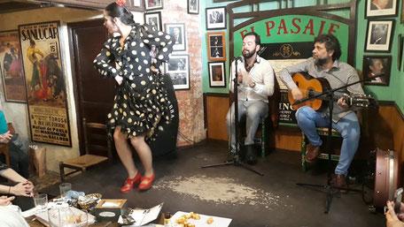 Espectáculo flamenco en jerez de la frontera