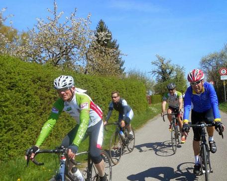 Der Radler ohne Helm gehört nicht zu unserer Gruppe! Bild: Armin H.