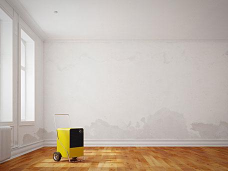 Kondenstrockner bei Wasserschäden in der Wohnung
