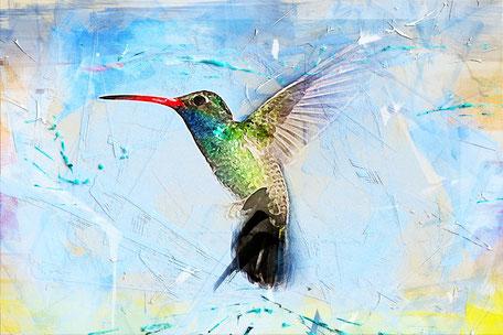 Der Kolibri ist in der spirituellen Welt ein Bote, der das Licht der Seele ankündigt und dazu auffordert, mehr Liebe und Harmonie ins Leben zu bringen.