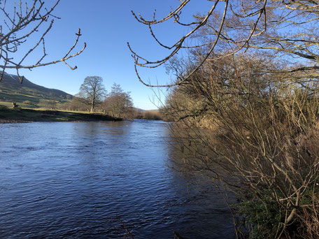Our river 12th January with lovely blue sky.  Stay a while