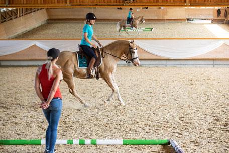 Intensivwochenende mit eigenem Pferd
