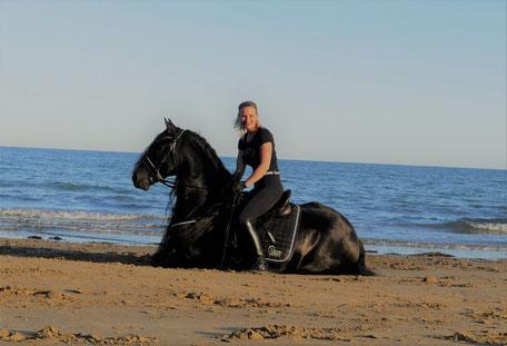 Urlaub am Strand mit Pferd