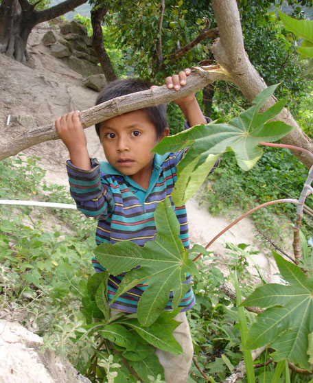 EDELAC FNE Fundacíon Nueva Esperanza Escuela de la Calle Aprosuvi Guatemala ProjektDELAC FNE Fundacíon Nueva Esperanza Escuela de la Calle Aprosuvi Guatemala Projekt