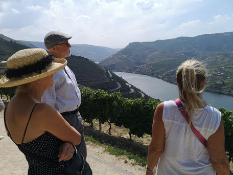 Tour no Douro