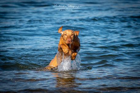 Wasser-Action