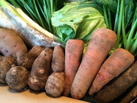 季節に合わせた旬の野菜を約10種類ほど詰めてお送ります。
