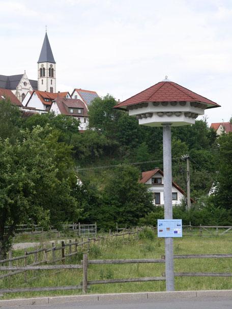 Erstes Schwalbenhaus im Zollernalbkreis - Haigerloch-Stetten (Foto: Rudi Sobirey)