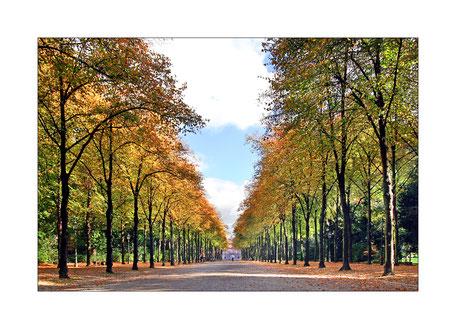 Duesseldorf-Hofgarten